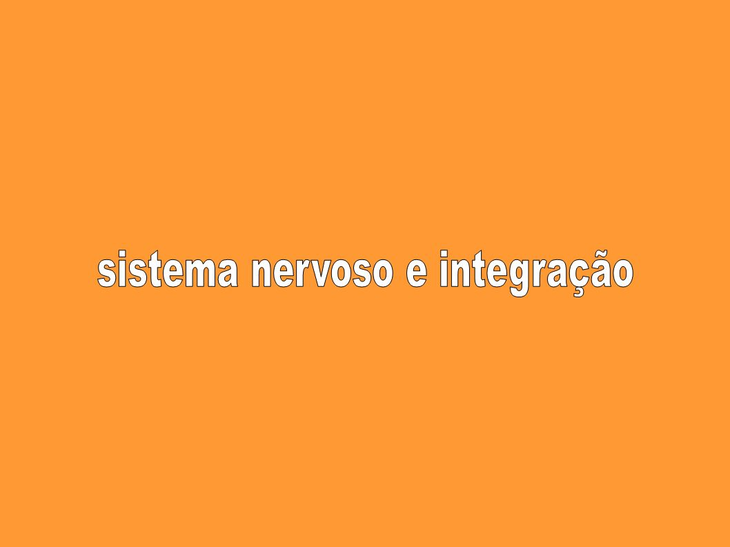 sistema nervoso e integração