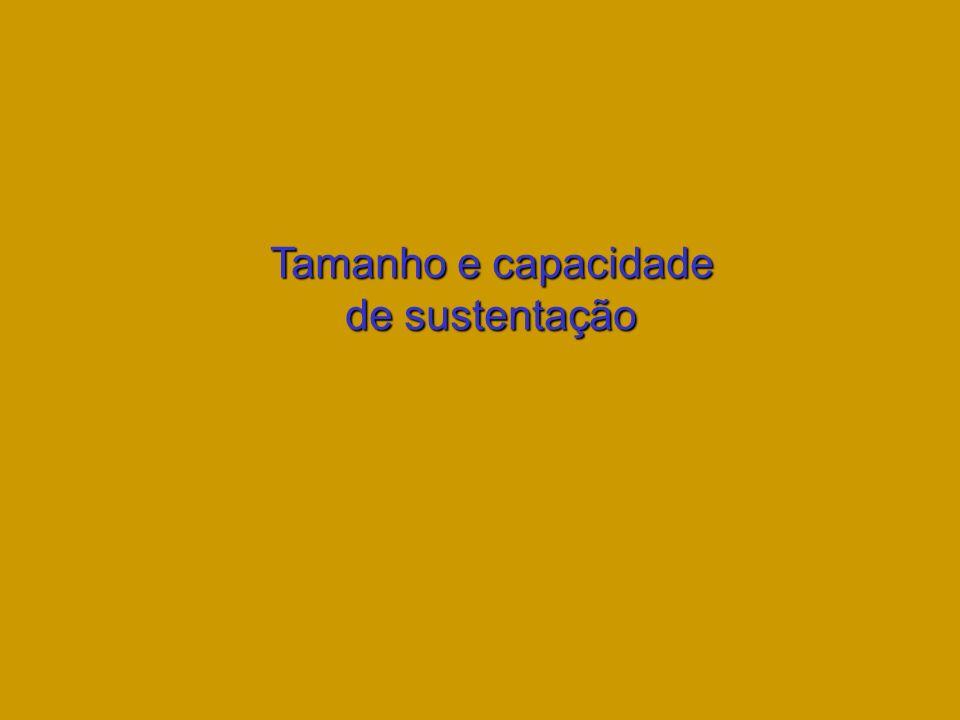 Tamanho e capacidade de sustentação
