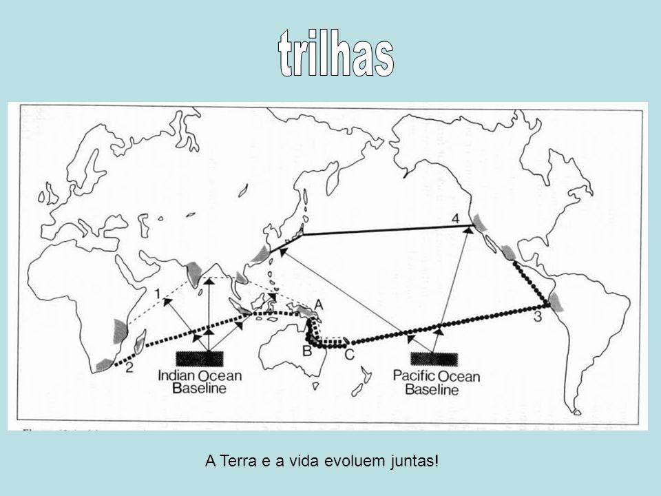 trilhas A Terra e a vida evoluem juntas!