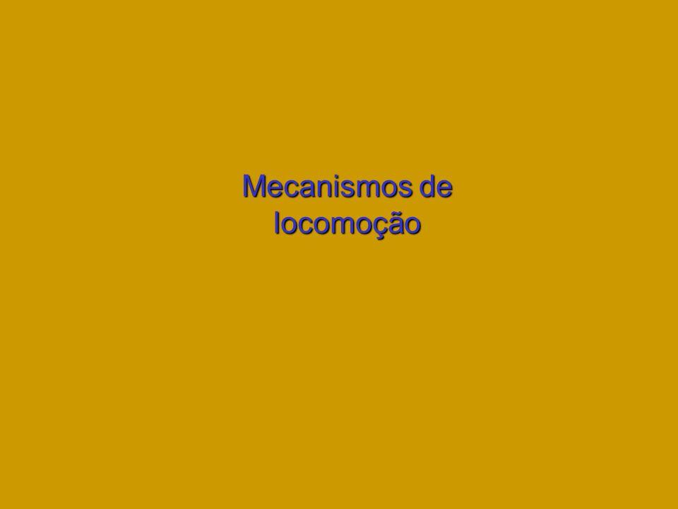 Mecanismos de locomoção