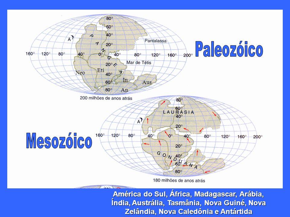 Paleozóico Eti. Neo. In. Aus. An. Mesozóico.