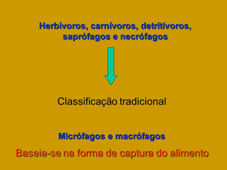 Classificação tradicional