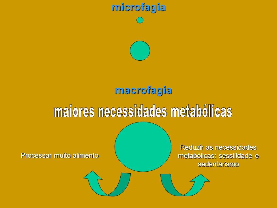 microfagia macrofagia