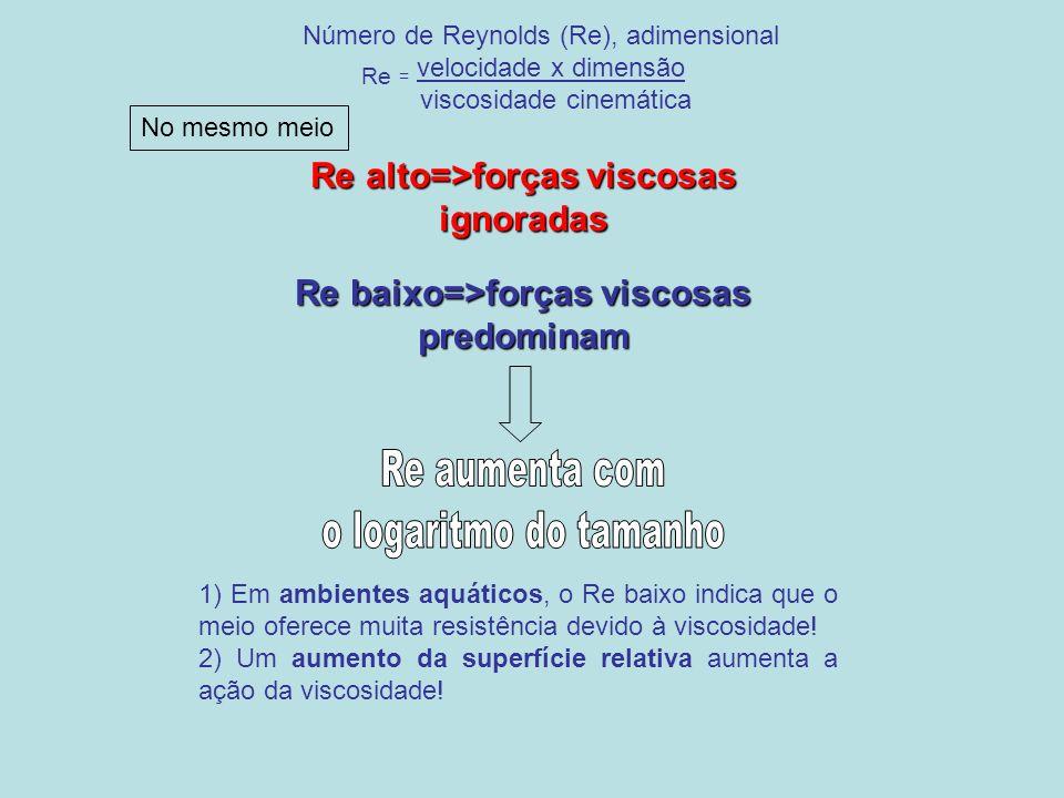 Re aumenta com o logaritmo do tamanho Re = velocidade x dimensão