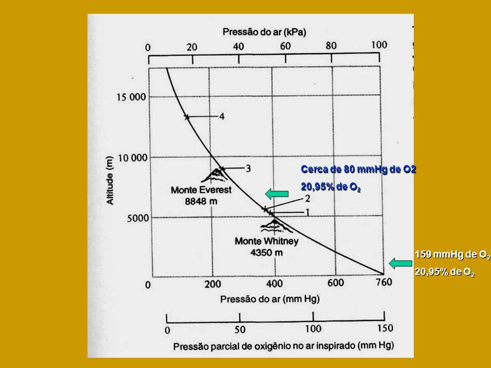 Cerca de 80 mmHg de O2 20,95% de O2 159 mmHg de O2 20,95% de O2