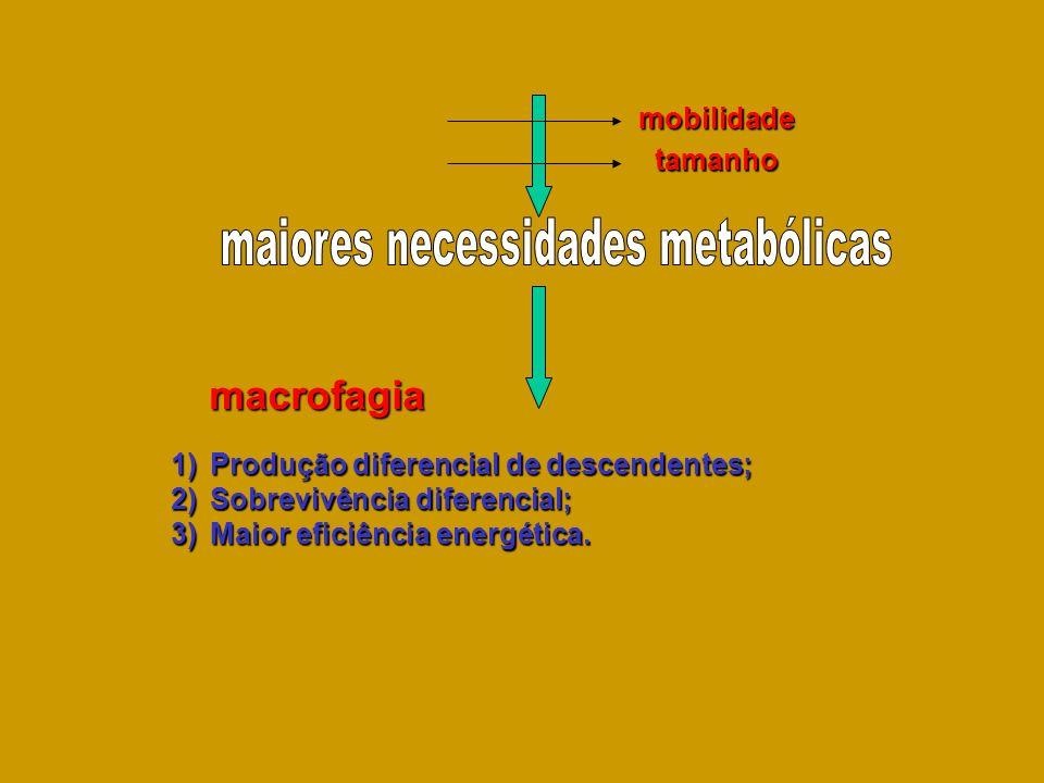 maiores necessidades metabólicas