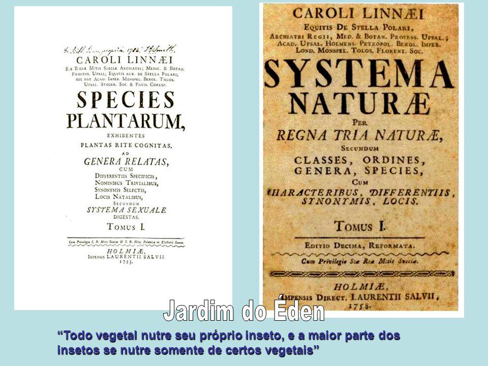 Jardim do Éden Todo vegetal nutre seu próprio inseto, e a maior parte dos insetos se nutre somente de certos vegetais