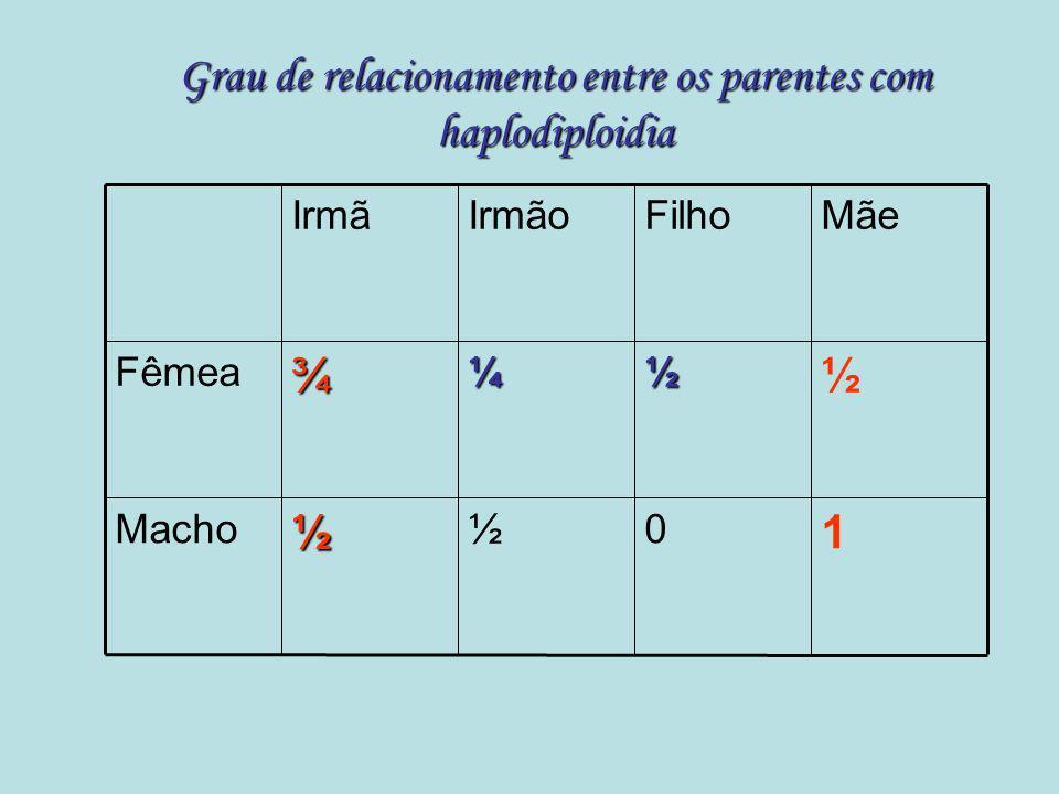 Grau de relacionamento entre os parentes com haplodiploidia