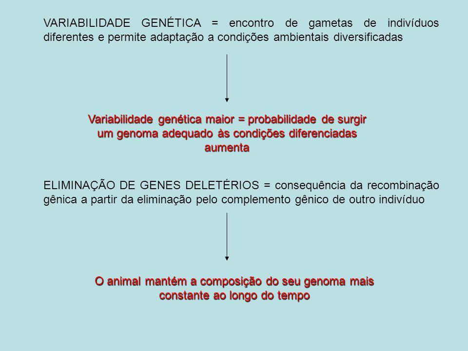 VARIABILIDADE GENÉTICA = encontro de gametas de indivíduos diferentes e permite adaptação a condições ambientais diversificadas