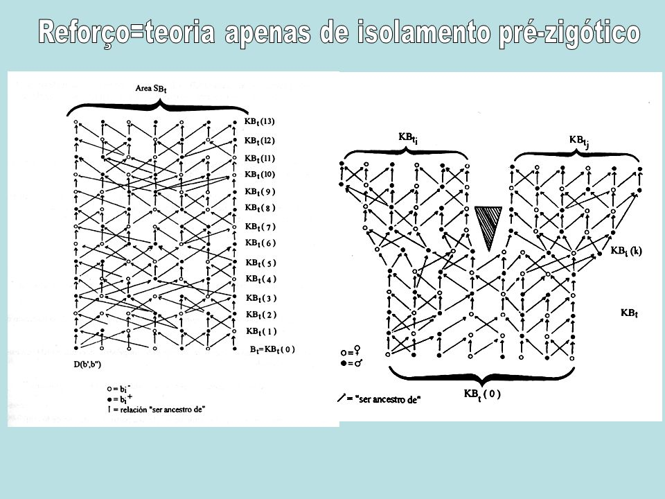 Reforço=teoria apenas de isolamento pré-zigótico