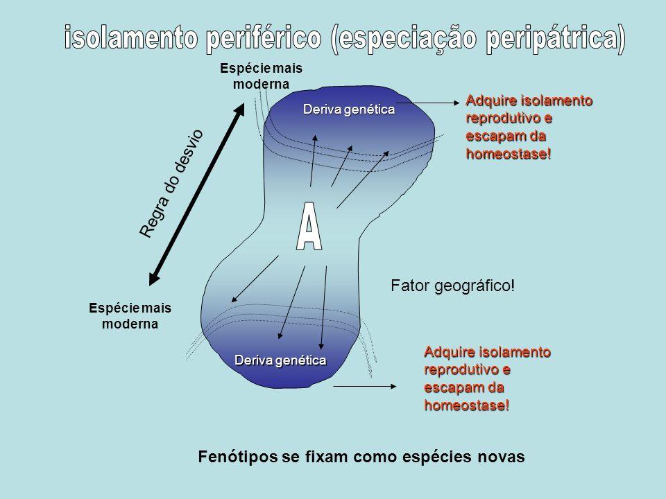 isolamento periférico (especiação peripátrica)