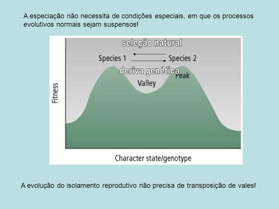 A especiação não necessita de condições especiais, em que os processos evolutivos normais sejam suspensos!