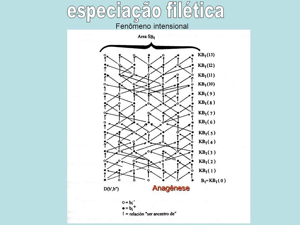 especiação filética Fenômeno intensional Anagênese