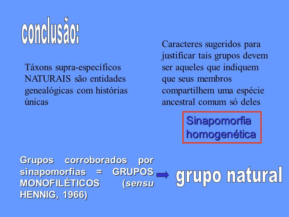 grupo natural Sinapomorfia homogenética conclusão: