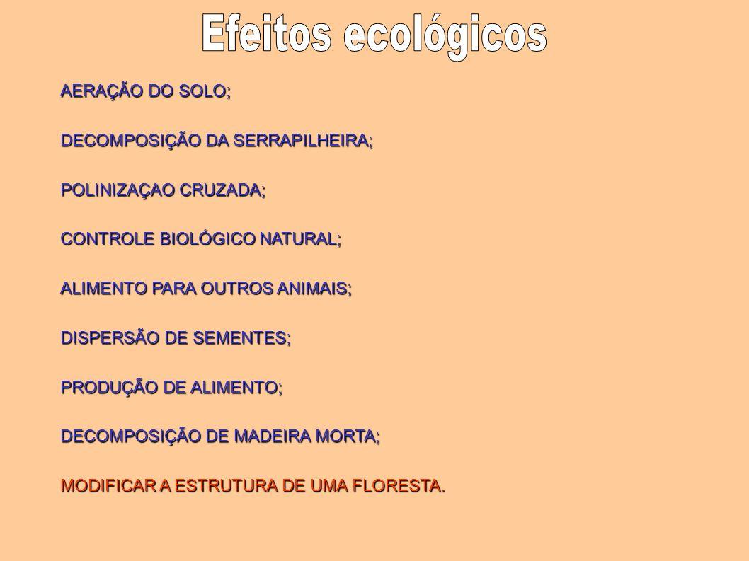 Efeitos ecológicos AERAÇÃO DO SOLO; DECOMPOSIÇÃO DA SERRAPILHEIRA;