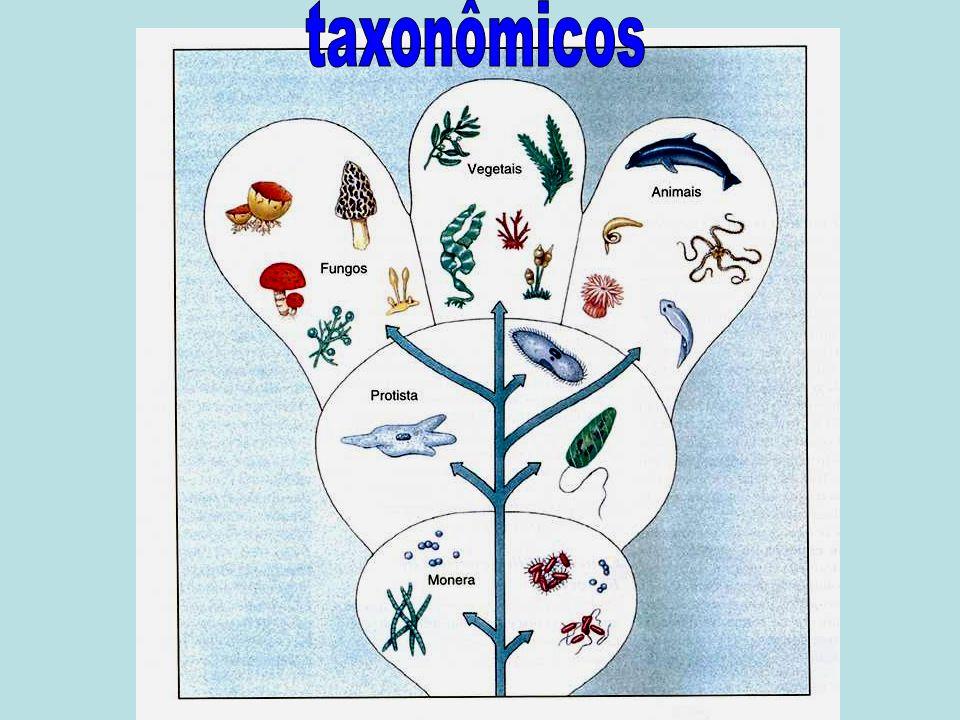 taxonômicos