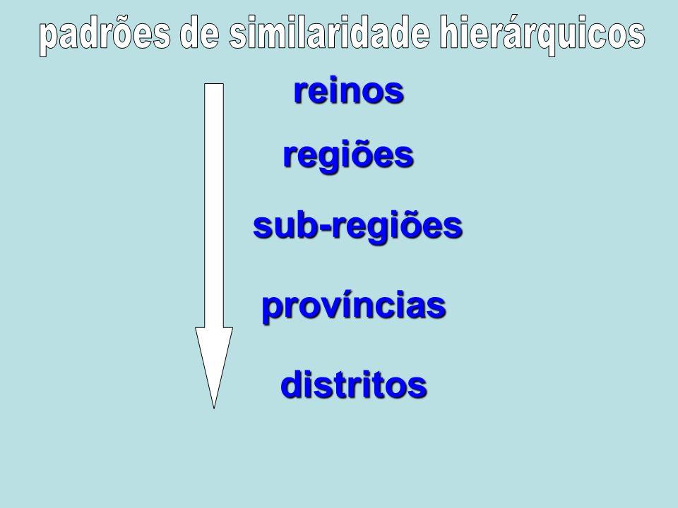 padrões de similaridade hierárquicos