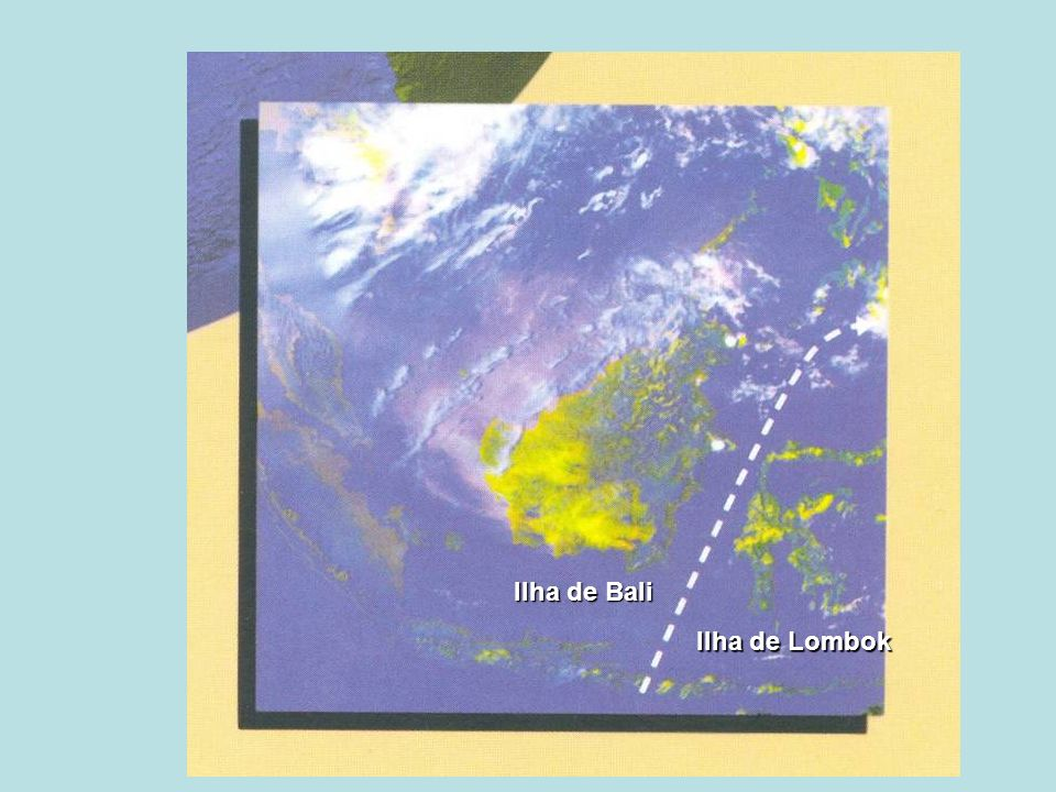 Ilha de Bali Ilha de Lombok