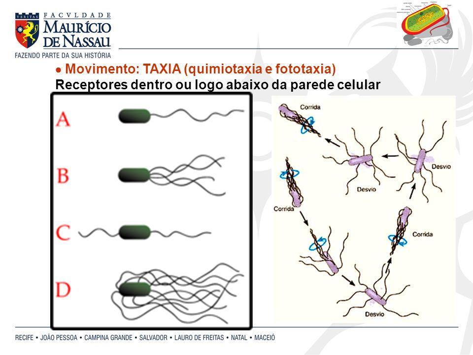  Movimento: TAXIA (quimiotaxia e fototaxia)