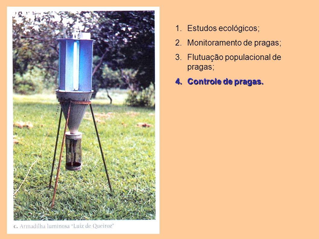 Estudos ecológicos; Monitoramento de pragas; Flutuação populacional de pragas; Controle de pragas.