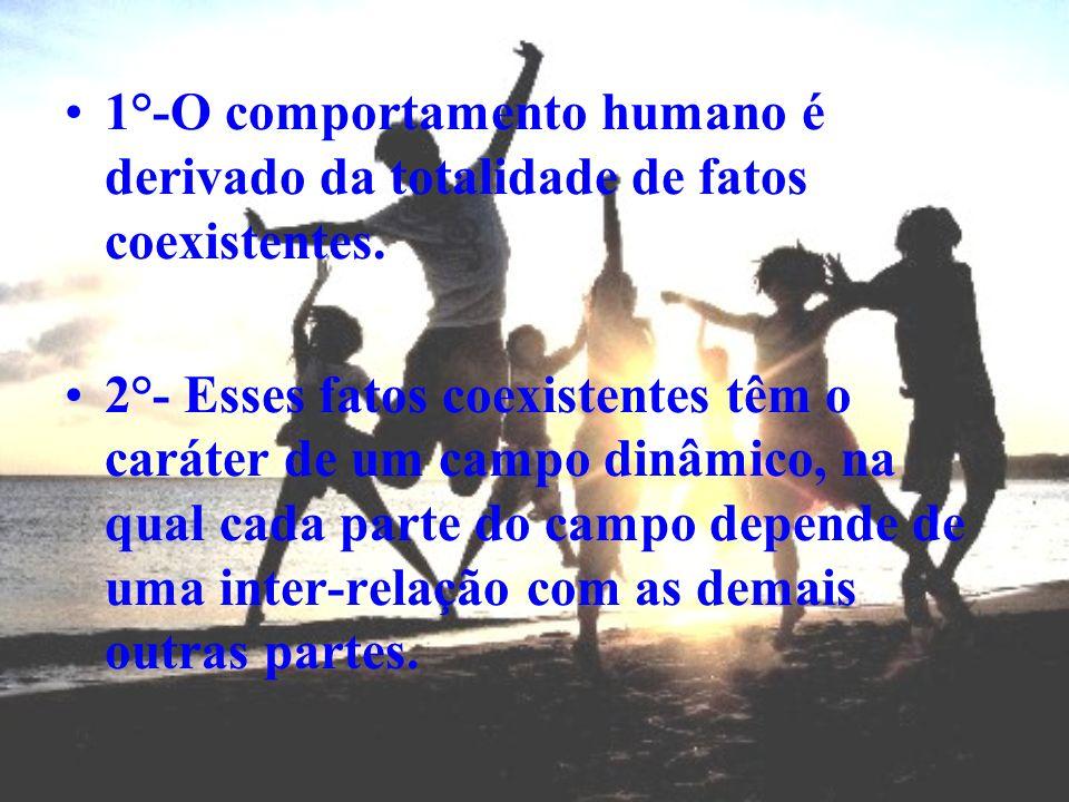 1°-O comportamento humano é derivado da totalidade de fatos coexistentes.