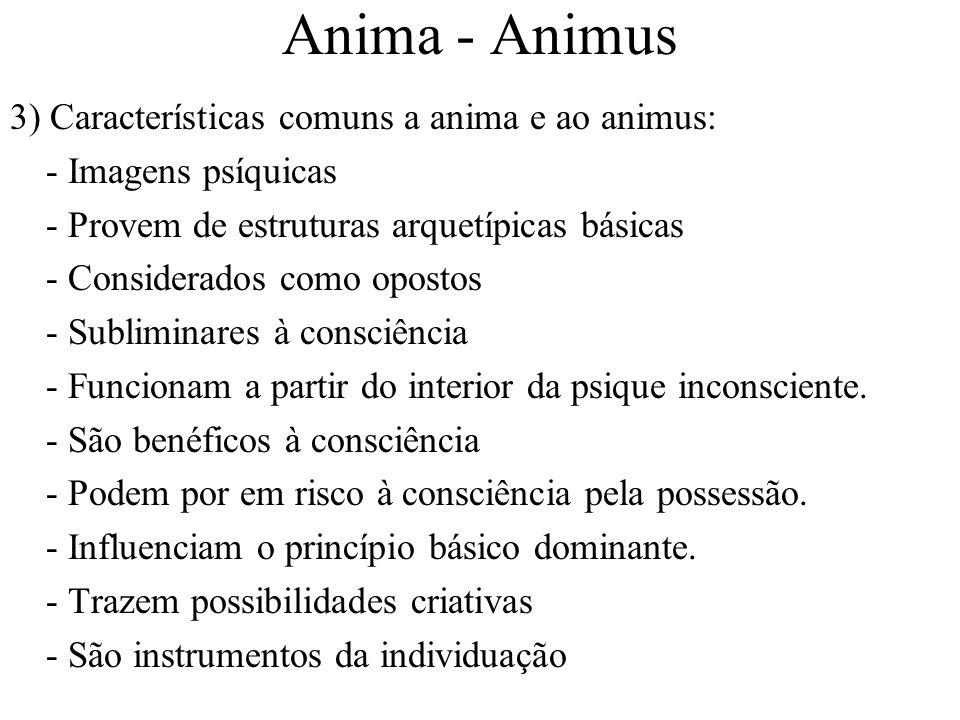 Anima - Animus 3) Características comuns a anima e ao animus: