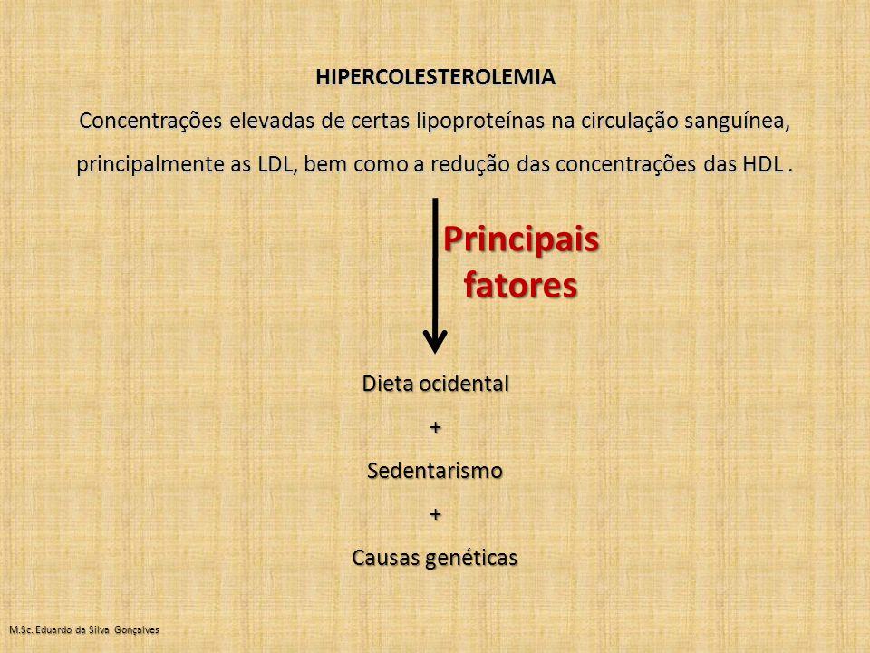 Principais fatores HIPERCOLESTEROLEMIA