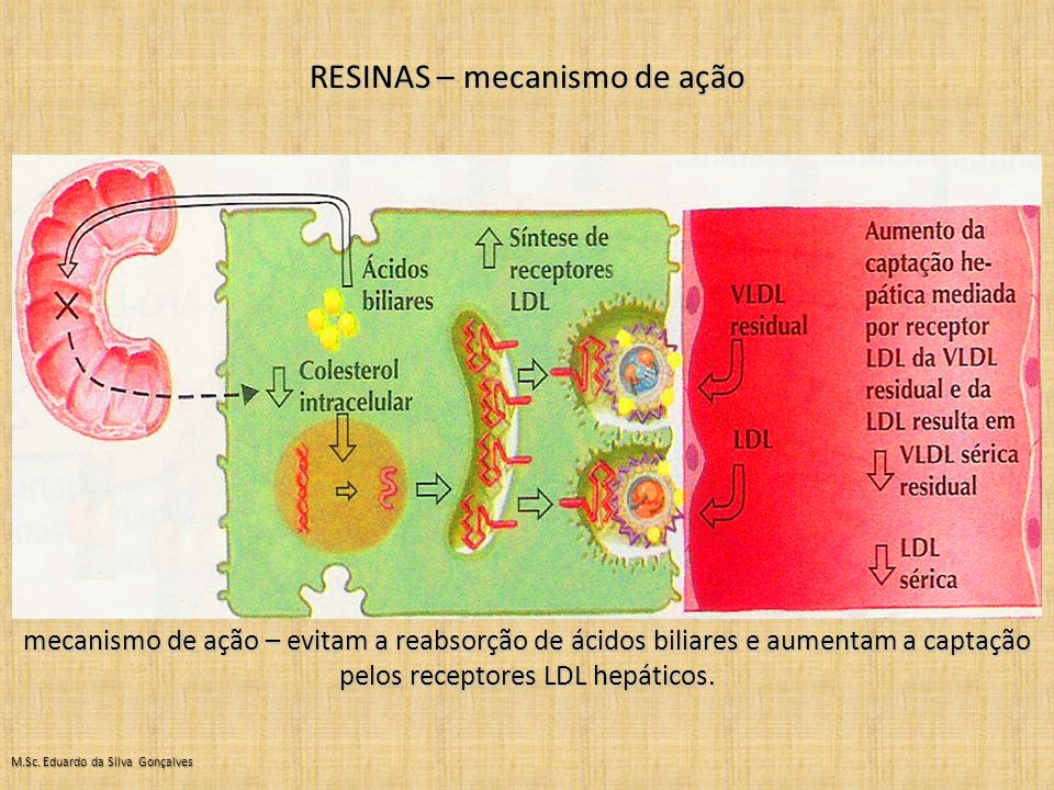 RESINAS – mecanismo de ação