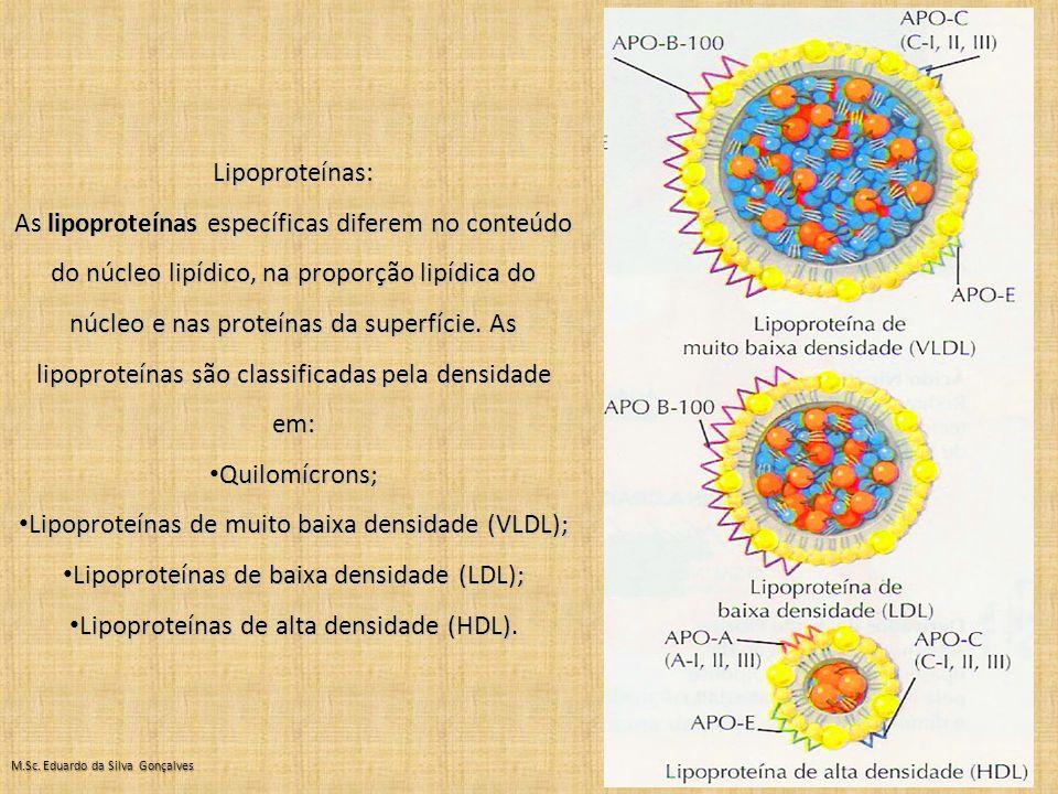 Lipoproteínas de muito baixa densidade (VLDL);