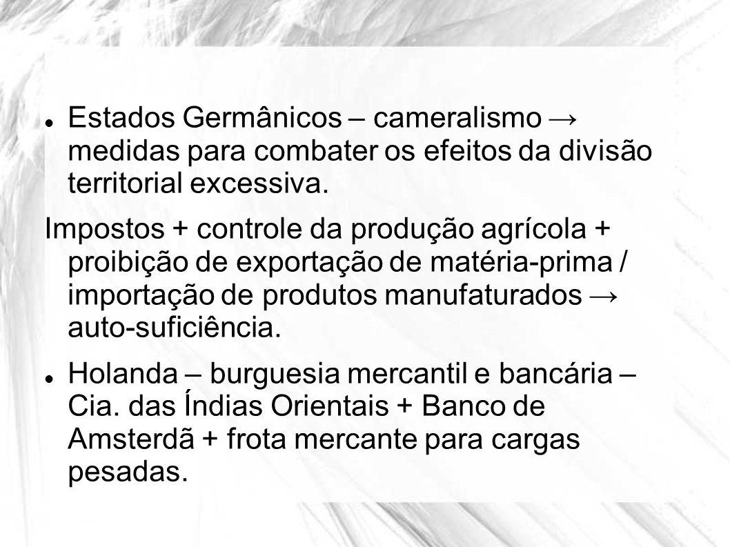 Estados Germânicos – cameralismo → medidas para combater os efeitos da divisão territorial excessiva.