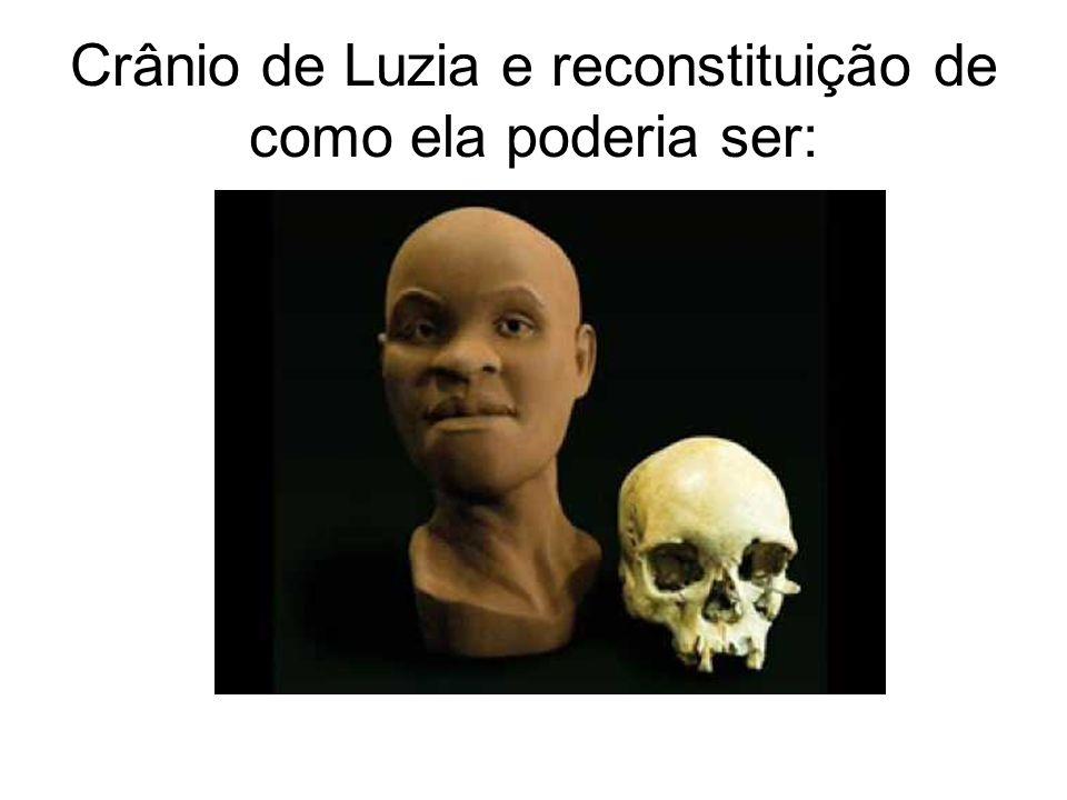 Crânio de Luzia e reconstituição de como ela poderia ser: