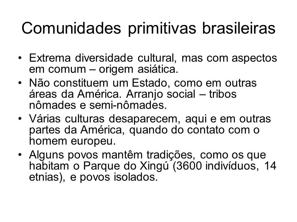 Comunidades primitivas brasileiras