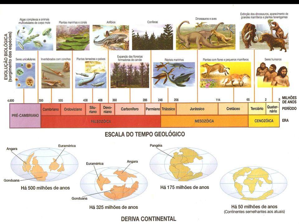 Eras Geológicas Eventos Período Cenozóico Dobramentos Modernos