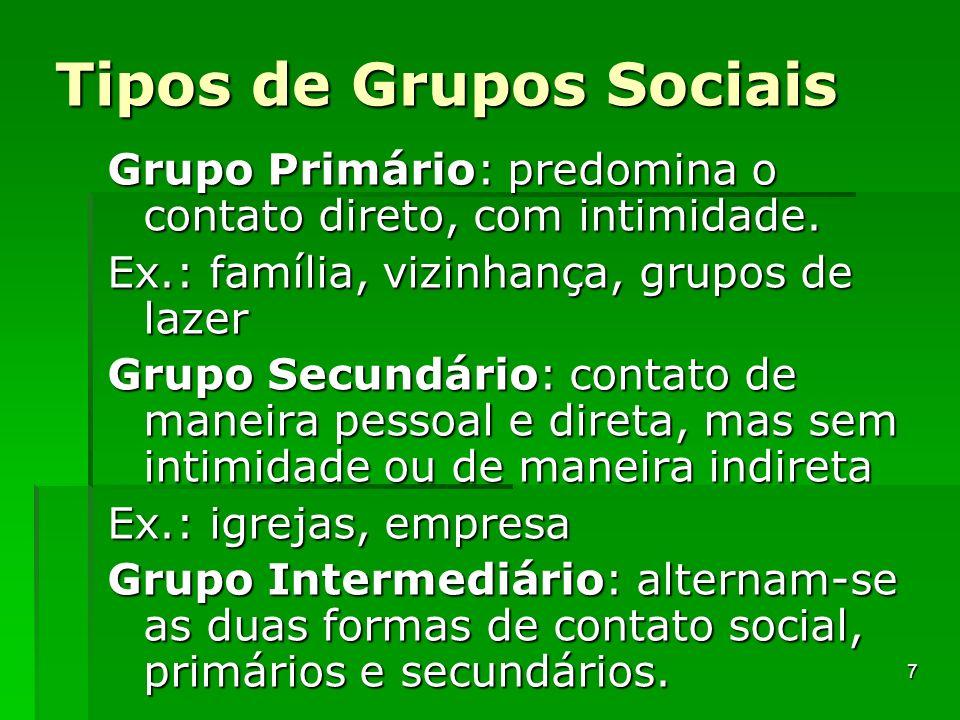 Tipos de Grupos Sociais