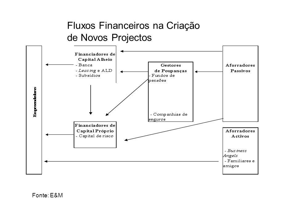 Fluxos Financeiros na Criação de Novos Projectos
