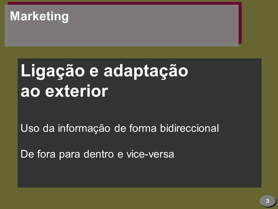 Ligação e adaptação ao exterior Marketing
