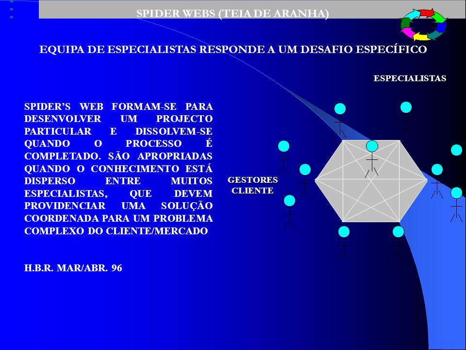 SPIDER WEBS (TEIA DE ARANHA)