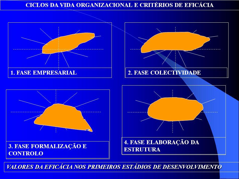 CICLOS DA VIDA ORGANIZACIONAL E CRITÉRIOS DE EFICÁCIA