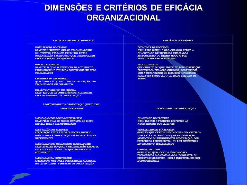 DIMENSÕES E CRITÉRIOS DE EFICÁCIA ORGANIZACIONAL