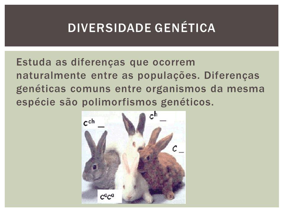 Diversidade genética
