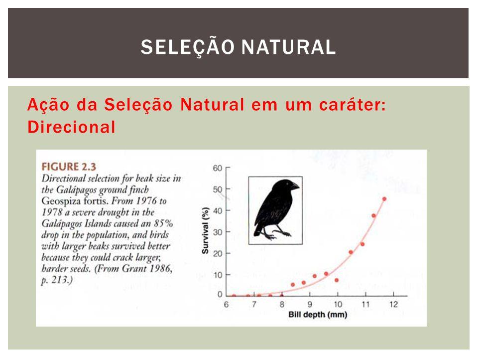 SELEÇÃO NATURAL Ação da Seleção Natural em um caráter: Direcional