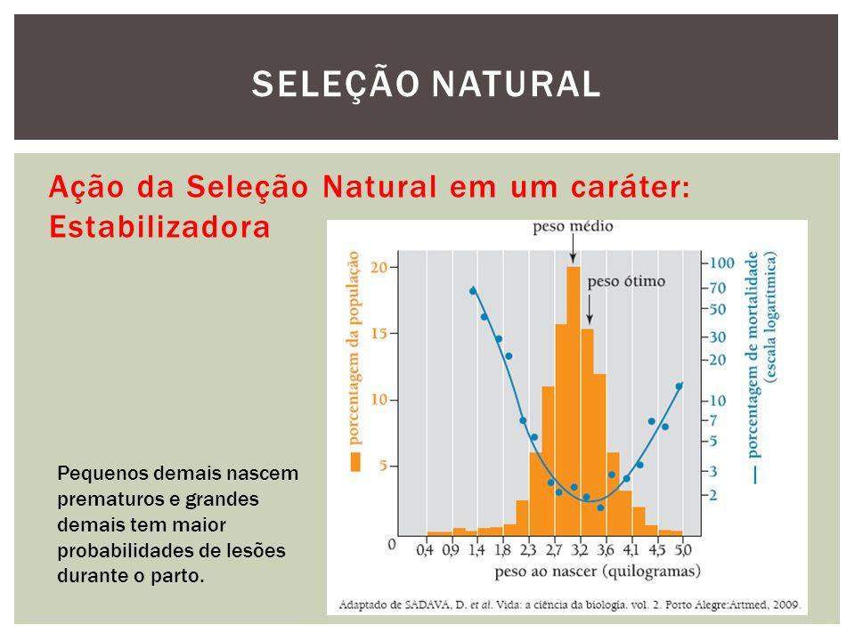 SELEÇÃO NATURAL Ação da Seleção Natural em um caráter: Estabilizadora