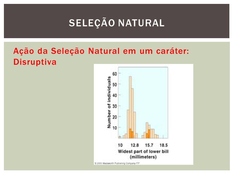 SELEÇÃO NATURAL Ação da Seleção Natural em um caráter: Disruptiva