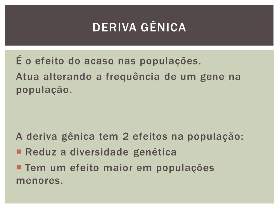 DERIVA GÊNICA É o efeito do acaso nas populações.
