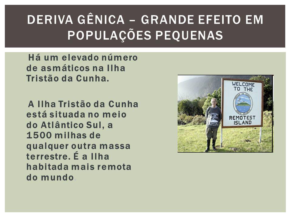 DERIVA GÊNICA – GRANDE EFEITO EM POPULAÇÕES PEQUENAS