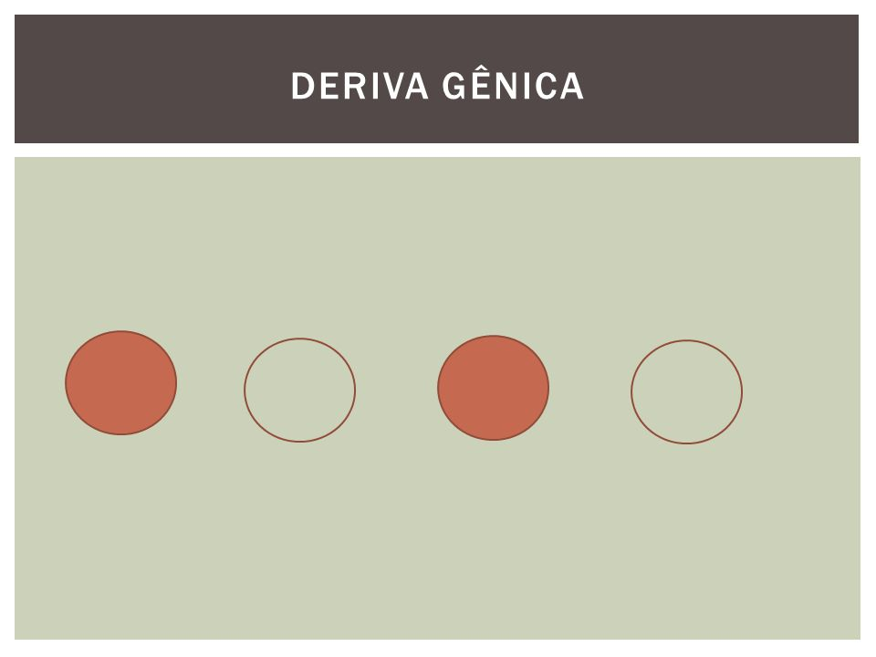DERIVA GÊNICA