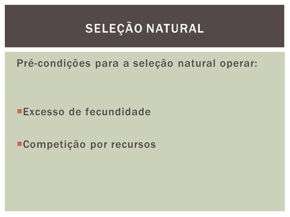 SELEÇÃO NATURAL Pré-condições para a seleção natural operar: