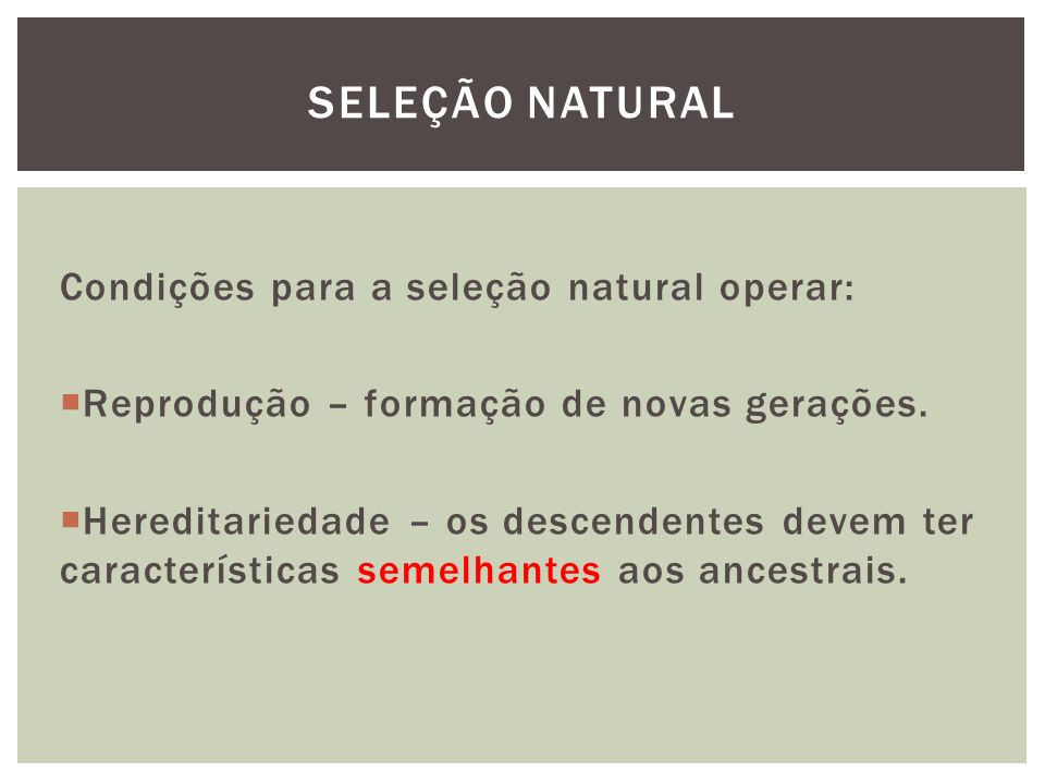SELEÇÃO NATURAL Condições para a seleção natural operar: