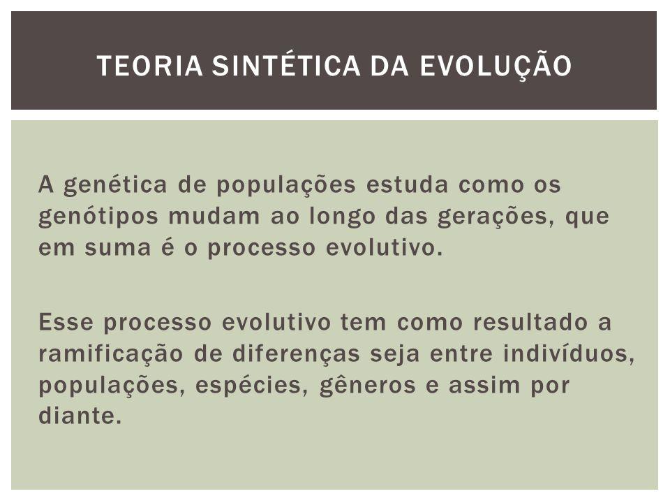 TEORIA SINTÉTICA DA EVOLUÇÃO