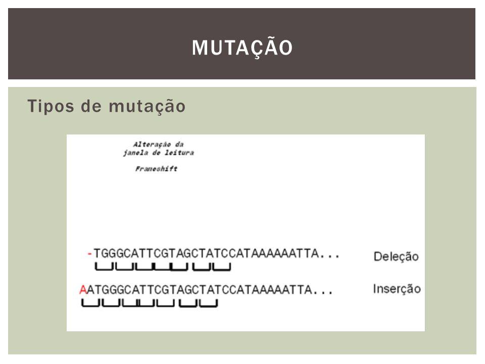 MUTAÇÃO Tipos de mutação